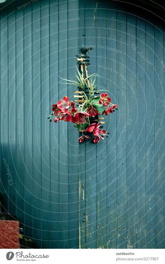 Blumen für alle Blumenstrauß Geschenk hängen gebinde Geburtstag frauentag Ecke Lagerschuppen Gartenhaus Holzhaus Berlin Großstadt sozial Stadt Szene Umgebung