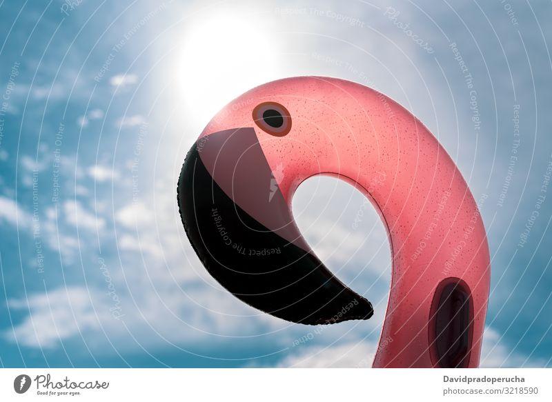 Aufblasbare rosa Pelikan-Matratze auf rosa Meer Strand sich[Akk] entspannen Natur schön sonnig MEER Paradies Salz Halobakterien Spanien Wasser Sommer im Freien