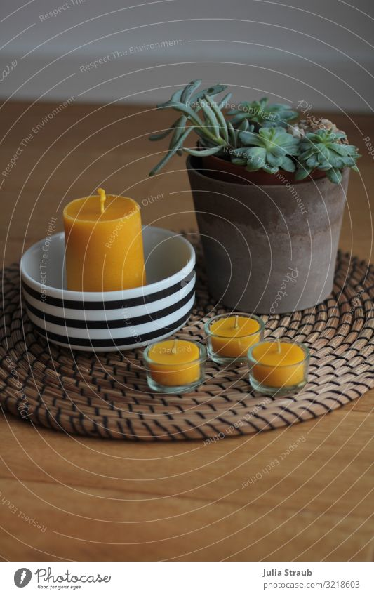 Holzboden Bienenwachskerze natürlich gelb braun Dekoration & Verzierung Kerze Schalen & Schüsseln gestreift Blumentopf Teelicht Dielenboden Tischdekoration
