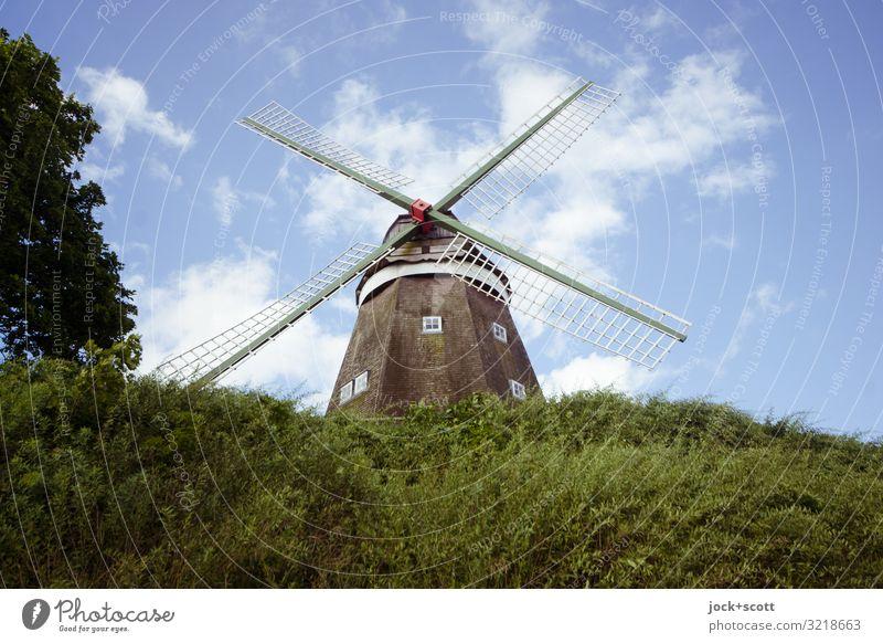 Art der Müllerin Landwirtschaft Architektur Himmel Wolken Sommer Schönes Wetter Baum Sträucher Müritz Windmühle Wahrzeichen Windmühlenflügel authentisch