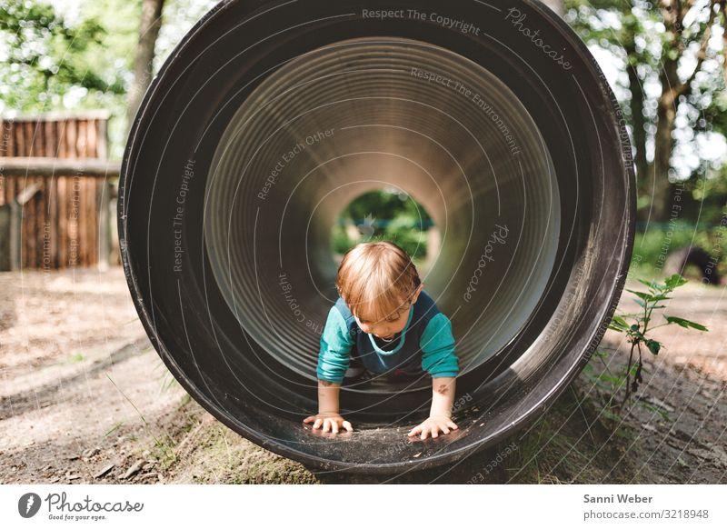 Entdecken Kind Junge Kindheit Leben Kopf 1 Mensch 3-8 Jahre Natur Pflanze Tier Sonne Sommer Schönes Wetter Baum Sträucher Grünpflanze Park Wald Spielen