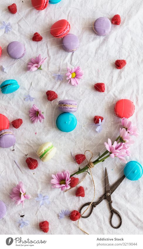 Scheren und Blumen inmitten von Makronen und Himbeeren Stoff Zusammensetzung Lebensmittel Gebäck farbenfroh lecker geschmackvoll Dessert retro altehrwürdig