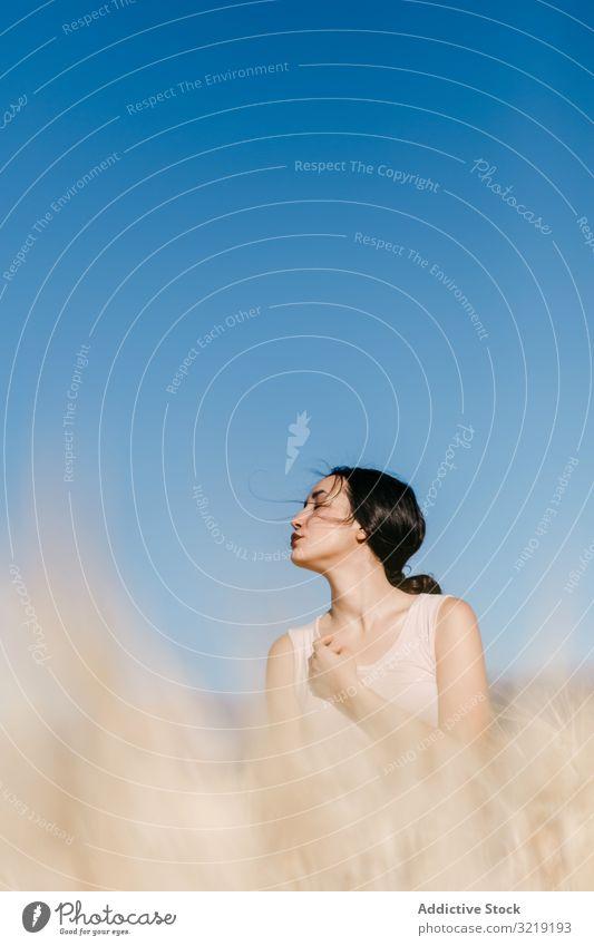 Asiatische Dame im Feld stehend Frau windig Natur asiatisch Wetter sinnlich jung Sommer Freiheit Wiese Gras Landschaft Harmonie idyllisch Windstille ruhig