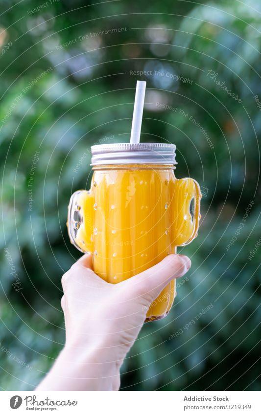 Kaktus-Maurer-Glas mit Fruchtsaft Saft Smoothie trinken Entzug Gesundheit Glaswaren Vegetarier Form organisch süß Diät roh natürlich frisch lecker Getränk Stroh