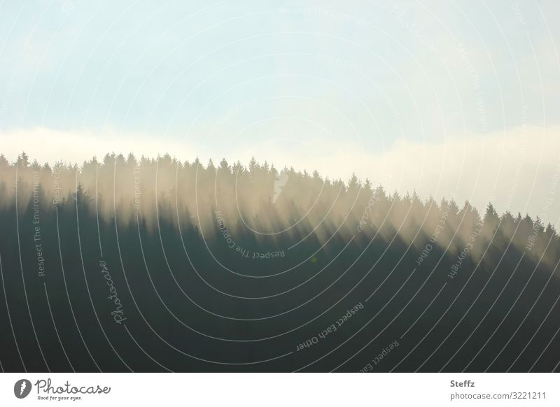 Morgenlicht Umwelt Natur Landschaft Himmel Wolken Sonnenaufgang Sonnenuntergang Herbst Klima Wetter Schönes Wetter Baum Wald Hügel Deutschland Europa natürlich