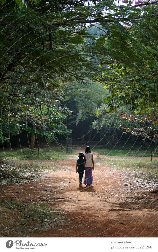 Spazierende Mädchen Garten Kind Jugendliche 2 Mensch 3-8 Jahre Kindheit Baum Blatt Park Coolness grün Zusammensein Schulmädchen zwei 5-10 Jahre Inder asiatisch