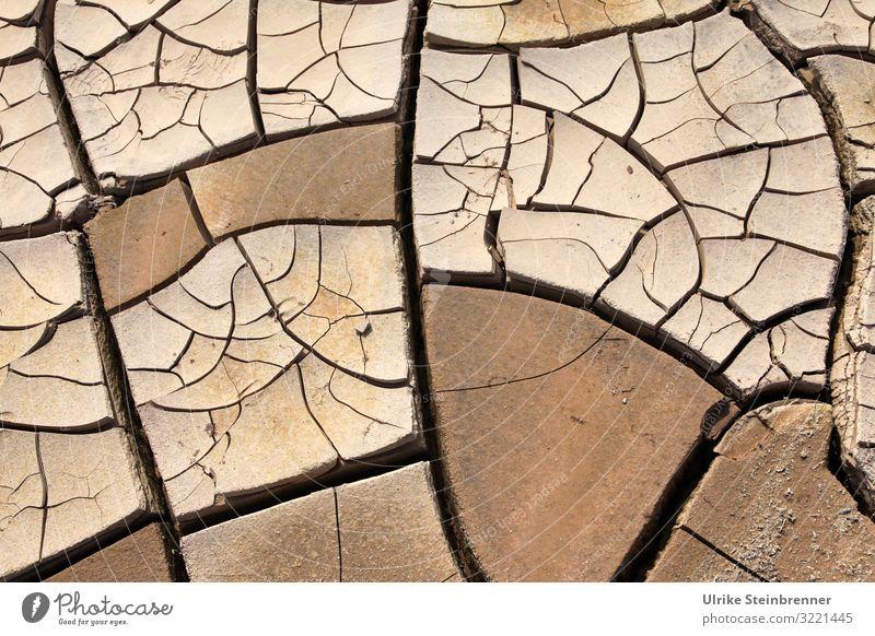 Dürrekatastrophe Natur Landschaft Umwelt Erde Feld Wetter Zukunft Klima bedrohlich Urelemente trocken Wüste Umweltschutz Riss Zerstörung