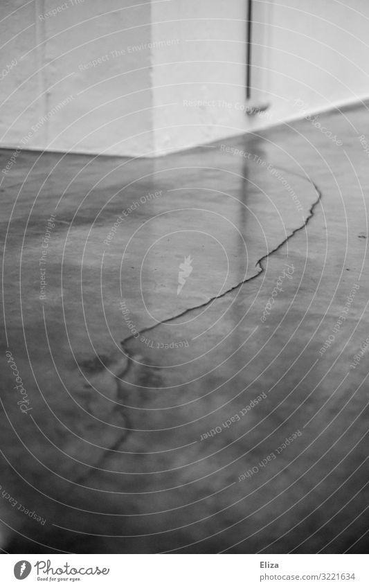 Riss Mauer Wand Boden Bodenbelag kaputt Schmerz Stress Endzeitstimmung Krise Schwäche Konflikt & Streit Verfall Teilung Gebäude alt beschädigt grau trist
