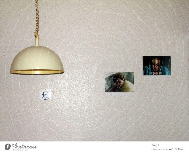 Küchenwand Frau Mensch Mann alt Erwachsene gelb Liebe Senior Familie & Verwandtschaft Tod Lampe Zusammensein Häusliches Leben Wohnung Dekoration & Verzierung