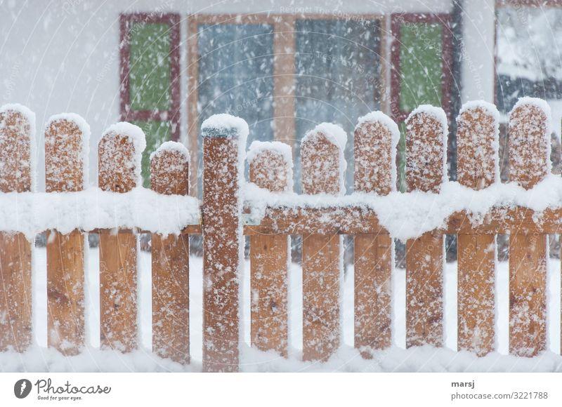 Wenn das Christkind kommt Weihnachten & Advent Winter Eis Frost Schnee Schneefall Fenster Gartenzaun Holzzaun authentisch kalt natürlich braun Hoffnung Idylle