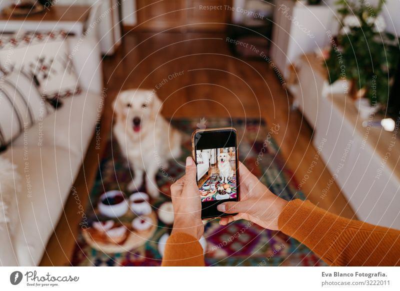 junge kaukasische Frau, die ihren Golden Retriever-Hund mit dem Handy fotografiert. Zuhause, in Innenräumen Grafik u. Illustration PDA Technik & Technologie
