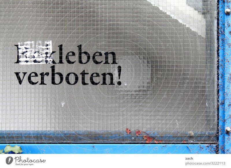 Leben verboten! Gesundheit Wohlgefühl Zufriedenheit Stadt Hauptstadt Stadtzentrum Mauer Wand Fassade Fenster Zeichen Schriftzeichen Schilder & Markierungen grau