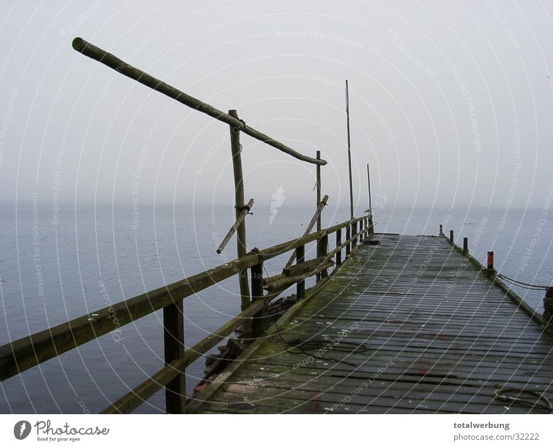Bootssteg in den Nebel Wasser Einsamkeit kalt Wasserfahrzeug Stimmung Steg Rügen