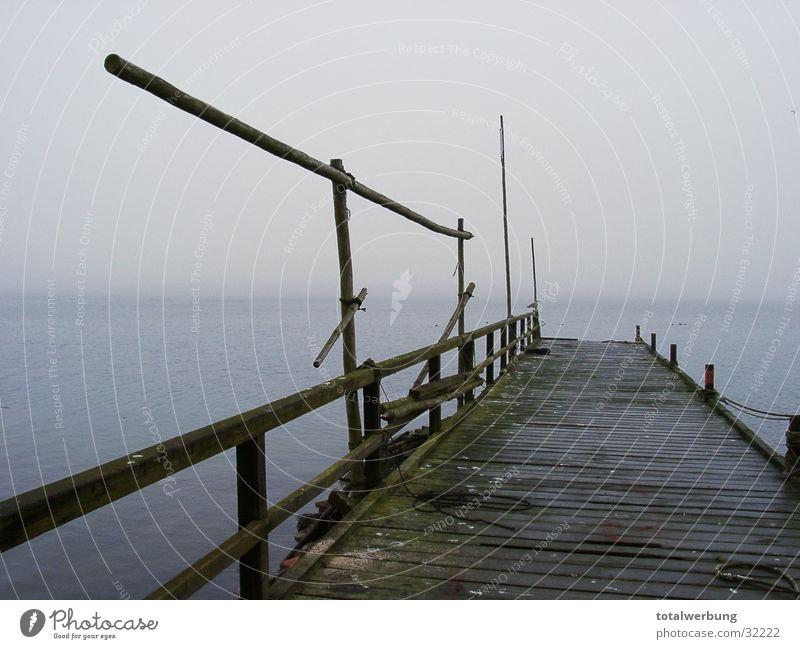 Bootssteg in den Nebel Wasserfahrzeug Steg kalt Stimmung Einsamkeit Rügen