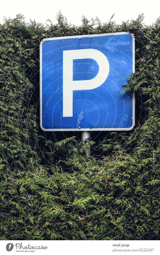 Langzeit Parken Hecke Deutschland Verkehr Verkehrswege Verkehrszeichen Verkehrsschild Parkplatz Zeichen Schriftzeichen stehen warten einfach nerdig blau grün