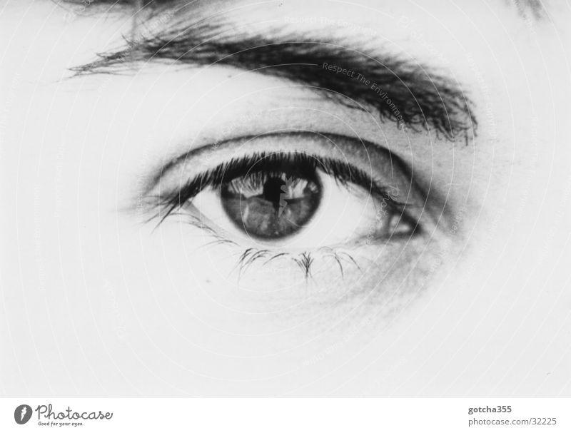Abschlußfahrt nach Marl Frau Auge beobachten spionieren