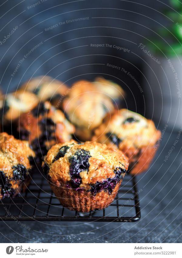Hausgemachte Blaubeer-Muffins auf Kühlgestell über dunklem Hintergrund. kalorienarm selbstgemacht Blaubeeren Kühlregal niemand vertikal Textfreiraum