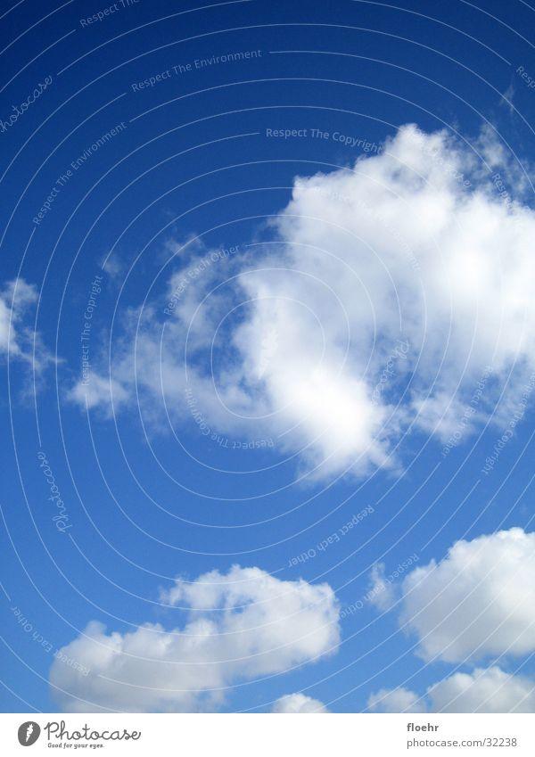 Sky Wolken Umwelt Himmel blau Freiheit Natur