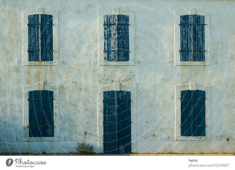 blau-gruen-grau Menschenleer Haus Gebäude Fassade Fenster Farbfoto Außenaufnahme Abend Zentralperspektive