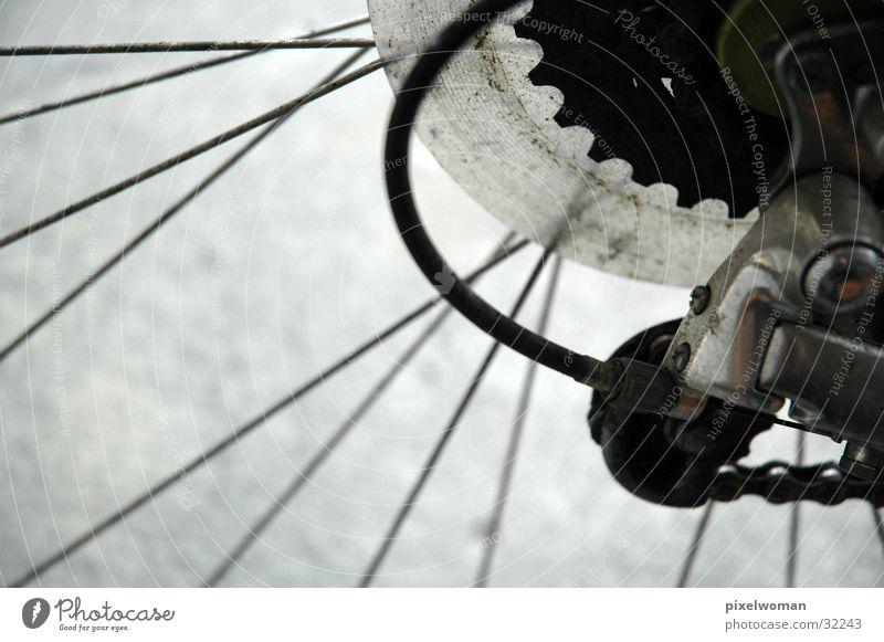 Zahnrad & Speichen Fahrrad Fototechnik Kette