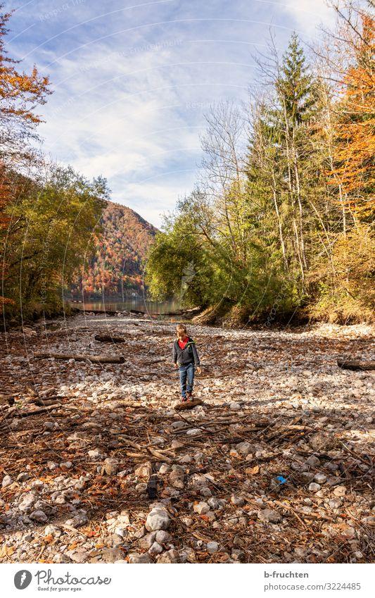 Kind im ausgetrockneten flussbett Ferien & Urlaub & Reisen Tourismus Abenteuer wandern 1 Mensch 8-13 Jahre Kindheit Wolken Herbst Schönes Wetter Wald Seeufer