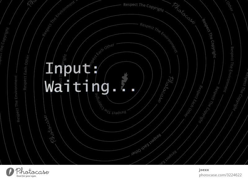 Waiting... Bildung Erwachsenenbildung Schüler Büro Computer Bildschirm Technik & Technologie Schriftzeichen schwarz weiß Input Englisch Ausgabe Farbfoto