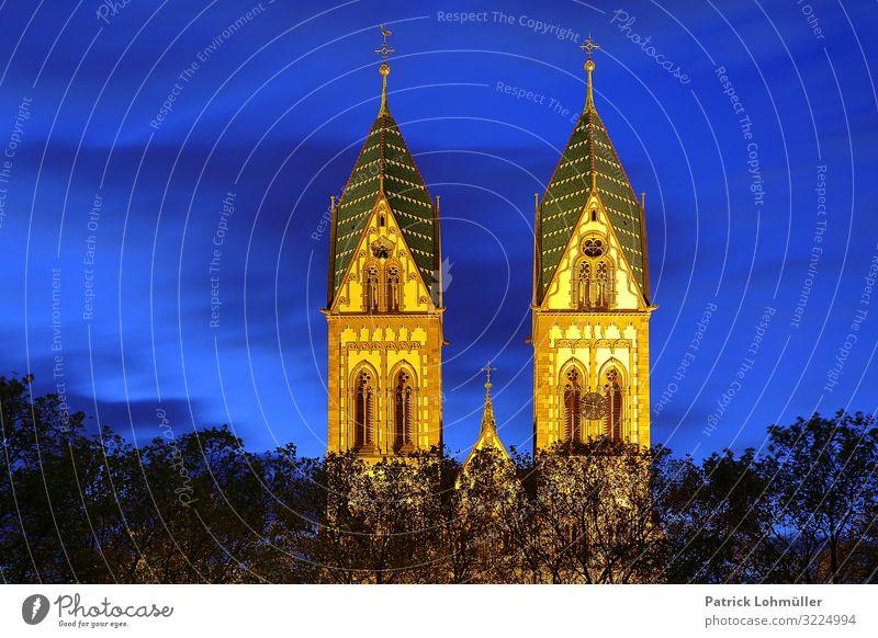 Zwillingstürme Sightseeing Städtereise Umwelt Himmel Baum Freiburg im Breisgau Deutschland Europa Kleinstadt Stadtzentrum Menschenleer Kirche Bauwerk