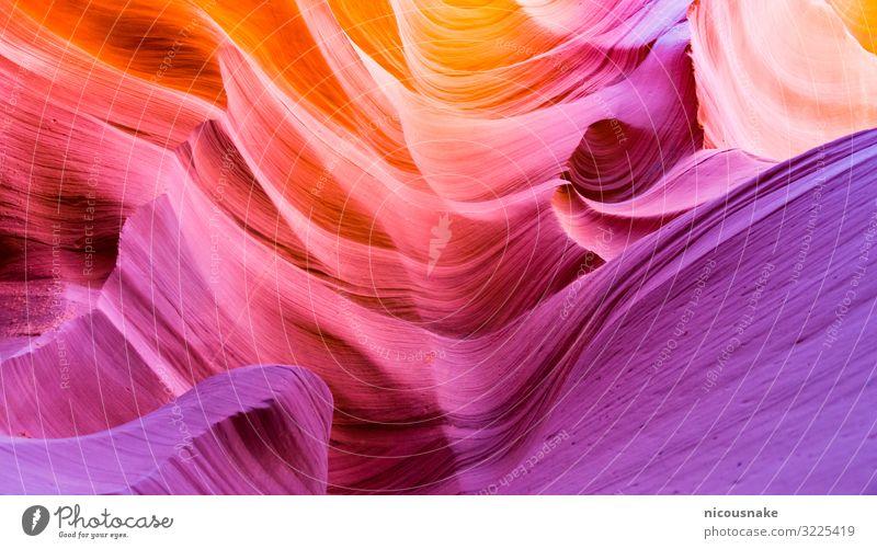Antilopenschlucht Ferien & Urlaub & Reisen Tourismus Sommer Umwelt Natur Landschaft Sand Felsen Schlucht Wellen Stein ästhetisch hell natürlich mehrfarbig Farbe