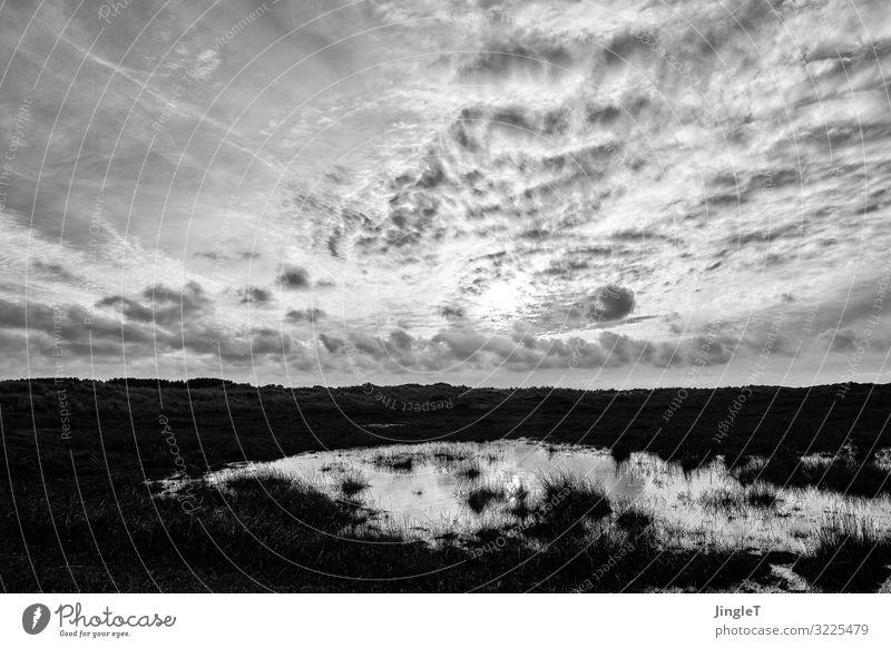 dark dune Umwelt Natur Landschaft Himmel Wolken Frühling Insel Ameland Düne schwarz weiß Gelassenheit geduldig ruhig Zufriedenheit Schwarzweißfoto Außenaufnahme