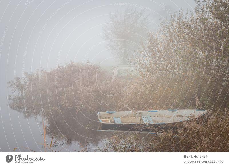 Altes Ruderboot in einem See an einem nebligen eisigen Morgen in den Niederlanden allein schön Schönheit Boot Windstille kalt Farbe früh leer Umwelt Europa