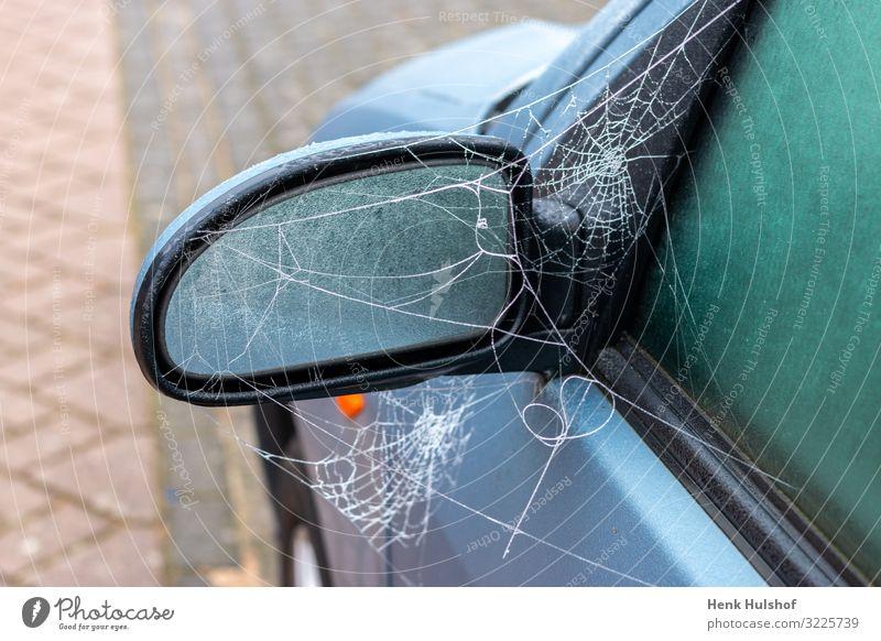Gefrorenes Spinnennetz auf einem Autospiegel Verkehr Straße PKW Glas Metall Kunststoff blau schwarz Güterverkehr & Logistik eisig gefroren Spiegel Farbfoto