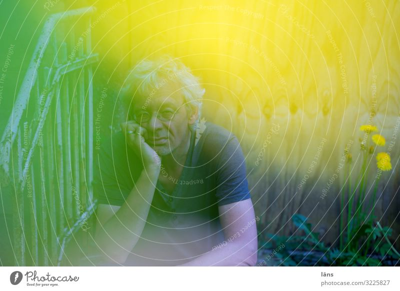 Nachdenklich Mensch maskulin Mann Erwachsene Leben 1 45-60 Jahre Natur Blume beobachten Denken Blick sitzen fantastisch gelb grün Gefühle Verschwiegenheit