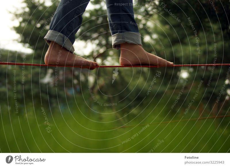 Balance Fitness Sport-Training Mensch feminin Mädchen Kindheit Beine Fuß 1 Umwelt Natur Pflanze Sommer Schönes Wetter Baum Gras Garten Park Wiese heiß natürlich