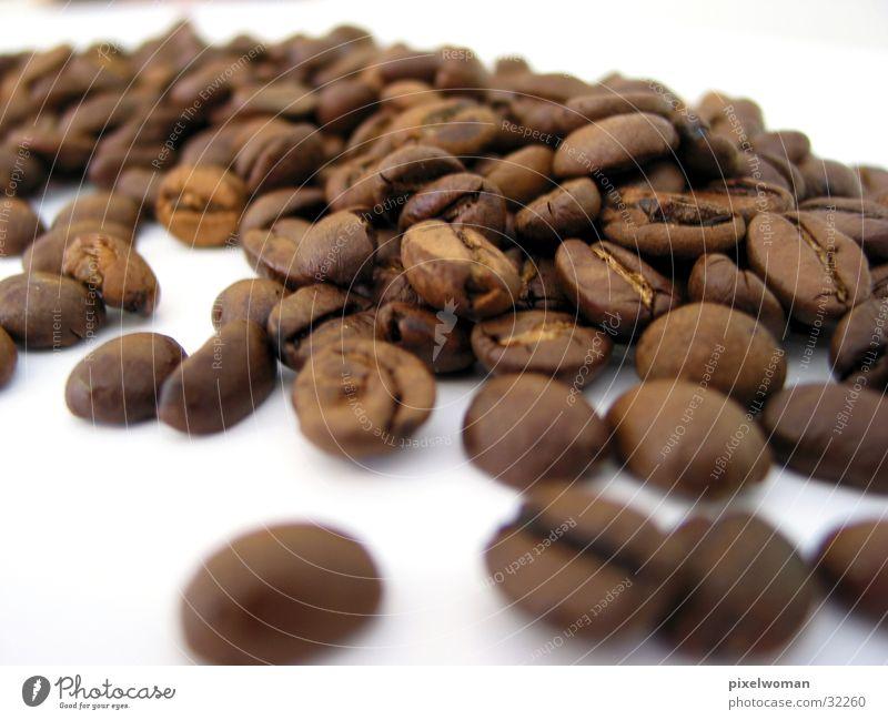Kaffeebohnen Dorf Bohnen Ernährung