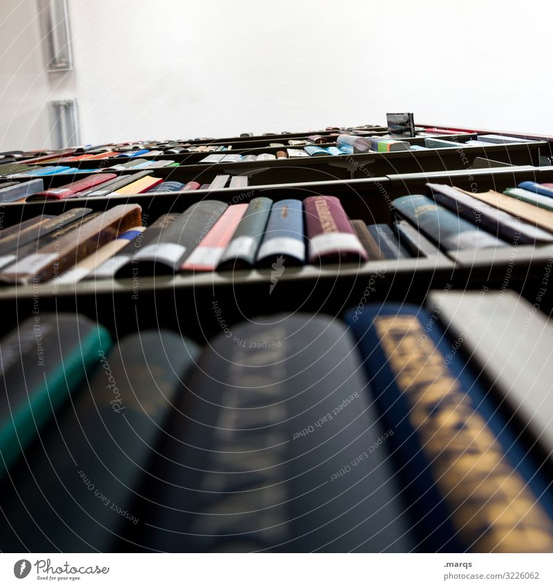Bibliothek Froschperspektive Bildung Studium lernen Buch Ordnung Universität lesen Buchrücken viele Erwachsenenbildung Prüfung & Examen Wissen