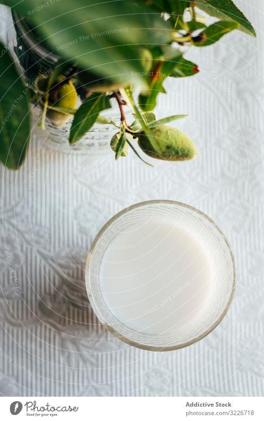 Glas Mandelmilch auf dem Küchentisch Tisch Pflanze grün Spitze Stoff Lebensmittel Diät organisch Gesundheit frisch Vegetarier Getränk trinken natürlich
