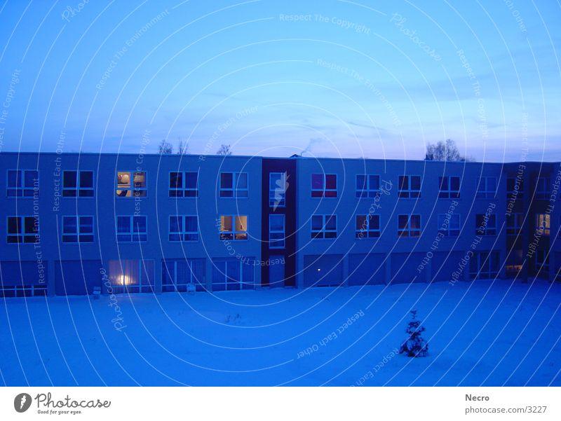 Haus in winterblau Baum blau Winter Haus Schnee Fenster Stimmung Architektur Tanne