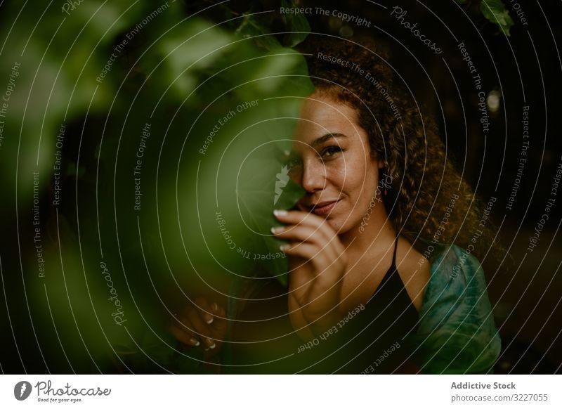 Lächelnde Frau berührt Blätter im Wald Blatt Wein dunkel Natur berühren Erwachsener elegant sinnlich Flora Pflanze Landschaft Botanik Wachstum Vegetation