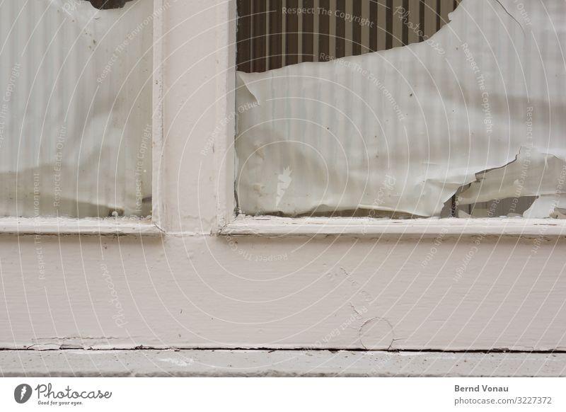 Neueröffnung alt weiß Haus Holz Fassade Tür Glas authentisch kaputt Papier altehrwürdig verstecken schäbig Kleinstadt Lack Schaufenster