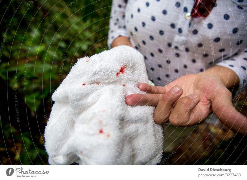 Angriff der Ameisen Ferien & Urlaub & Reisen feminin Arme Hand 1 Mensch Natur Urwald Desaster bedrohlich Todesangst Schmerz Schnittwunde Blut Finger Tierbiss