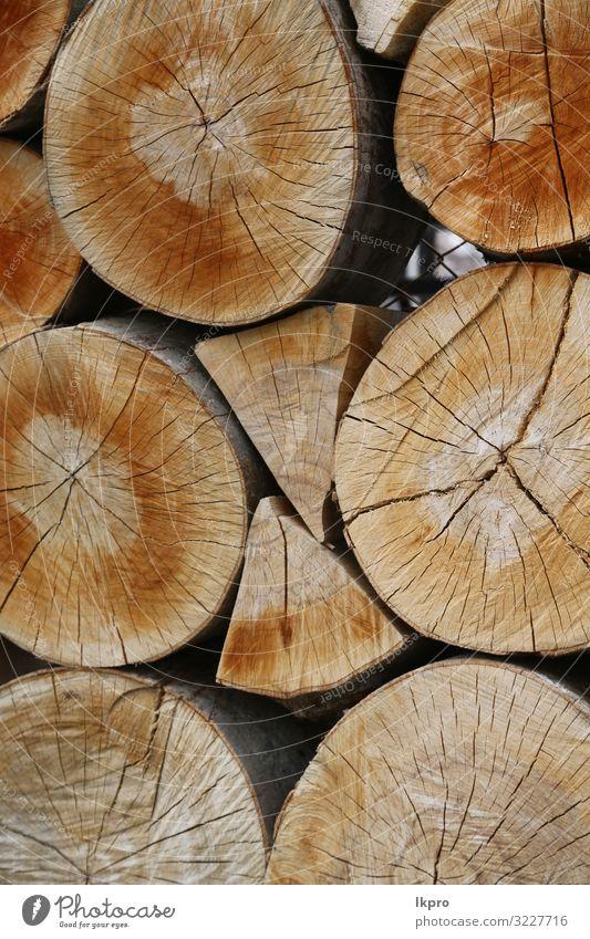 Holzschnitt und Hintergrund Arbeit & Erwerbstätigkeit Industrie Säge Umwelt Natur Pflanze Baum Wald Ring natürlich braun Energie geschnitten Totholz Konsistenz