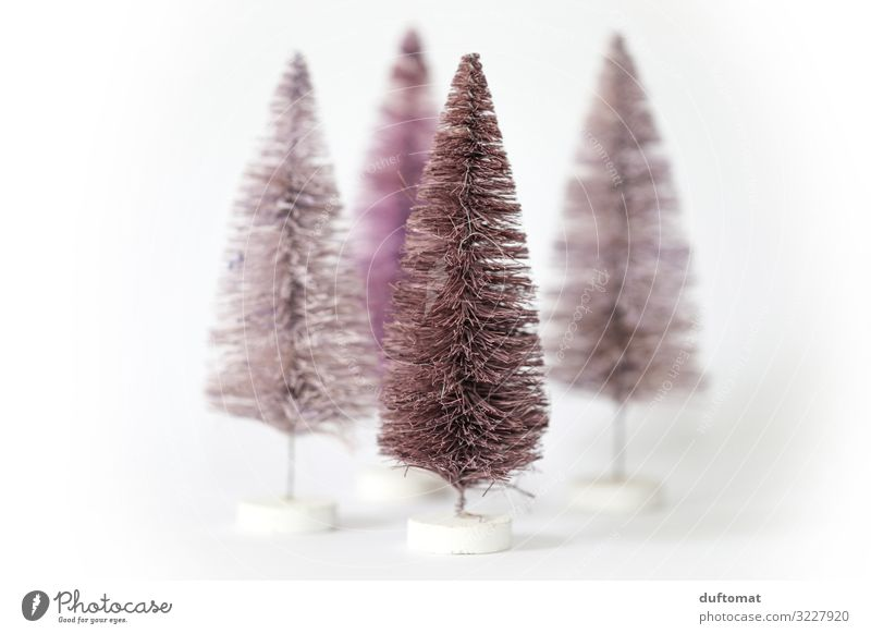 Moderne Tannen Weihnachten & Advent nackt Baum Winter Umwelt kalt Schnee Feste & Feiern außergewöhnlich rosa Häusliches Leben Dekoration & Verzierung hell