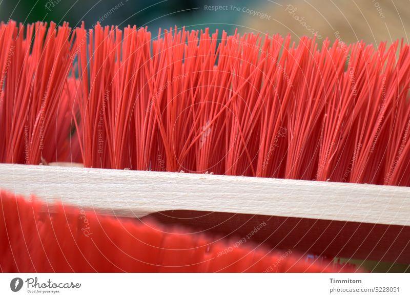 Zwei Besen mit Kunststoffborsten sind einsatzbereit Borsten Sauberkeit Kehren reinigen Gebrauchsgegenstand Holz Farbe grell rot Reinlichkeit