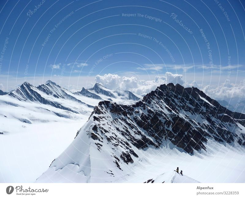 Berner Oberland Klima Klimawandel Schönes Wetter Eis Frost Schnee Felsen Alpen Berge u. Gebirge Mönch (Berg) Gipfel Schneebedeckte Gipfel Gletscher Glück