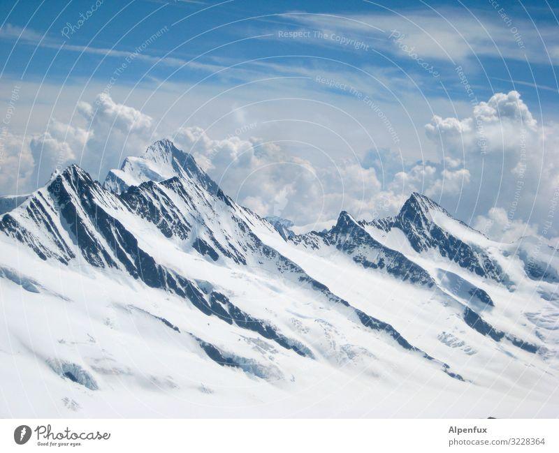 Vorsicht scharf ! Zähne im Berner Oberland ruhig Berge u. Gebirge kalt Wege & Pfade Felsen Zufriedenheit Erfolg Abenteuer Schönes Wetter Zukunft Coolness Klima