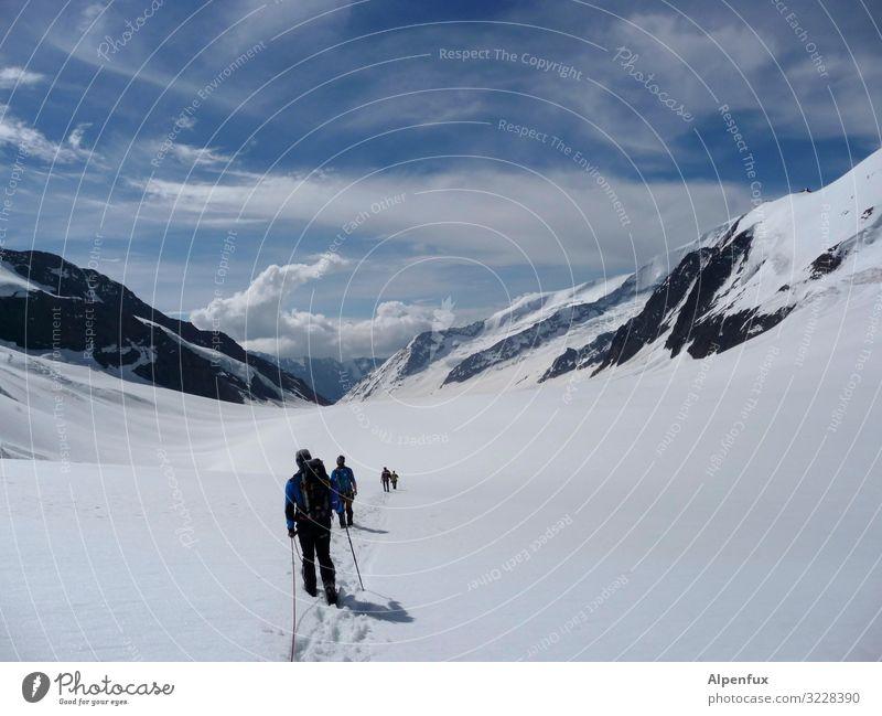 Der Alpenraum- unendliche Weiten Freude Berge u. Gebirge kalt Schnee Glück Felsen Zufriedenheit wandern Eis Kraft Erfolg Abenteuer laufen Schönes Wetter