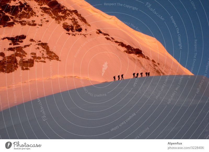 Stau am Morgen Klima Klimawandel Schönes Wetter Eis Frost Schnee Felsen Alpen Berge u. Gebirge Berner Oberland Jungfrau (Berg) Gipfel Schneebedeckte Gipfel