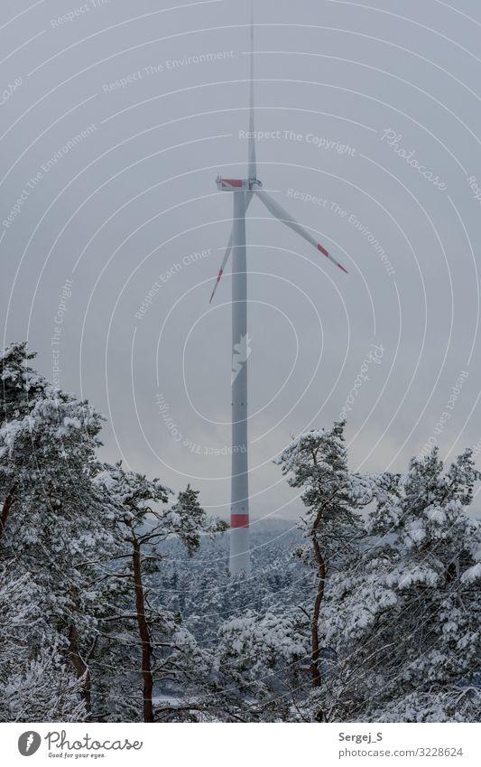 Windkraft Winter Schnee Energiewirtschaft Windkraftanlage Energiekrise Natur Landschaft Tier Himmel Wolken Wald drehen GörauerAnger Windrad Farbfoto