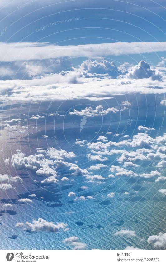 über den Wolken II Himmel nur Himmel Herbst Schönes Wetter Meer Luftverkehr Passagierflugzeug Propellerflugzeug Abflughalle Flugzeugausblick außergewöhnlich