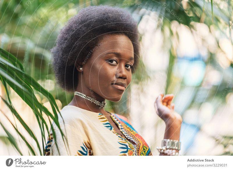 Fröhliche afrikanische Dame inmitten von Palmenblättern Frau Lächeln Afrikanisch Handfläche Blatt traditionell farbenfroh Freude sich[Akk] entspannen ethnisch